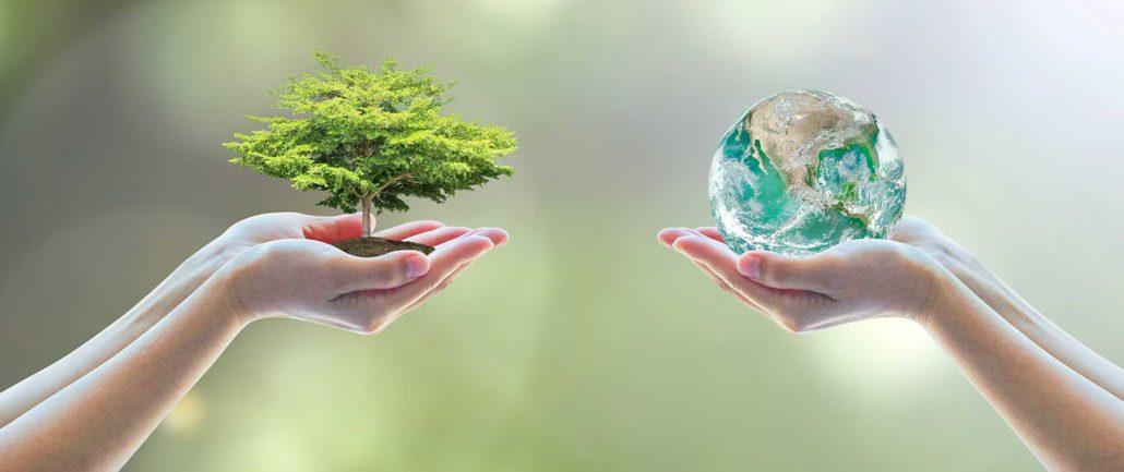 licenciamento-ambiental-cave-ambientale